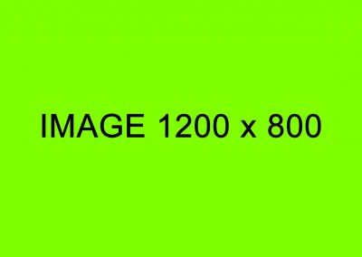image-1200x800