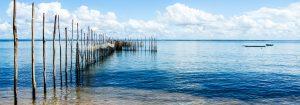 Paysage de pêche traditionnelle dans le nordeste du Brésil