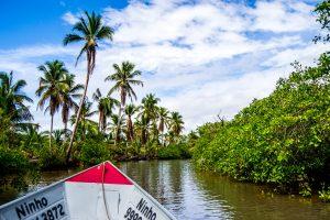 Naviguez sur les fleuves, deltas et rivières, en plein cœur de la mangrove - © Lucas Ly