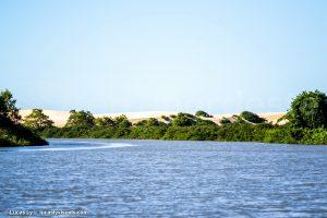 Dunes et mangrove, rio Preguicas