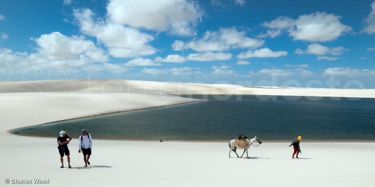 Les dunes des Lençois Maranhenses, trek avec mule