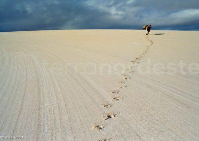 Traces de pas sur la dune, Lençóis Maranhenses