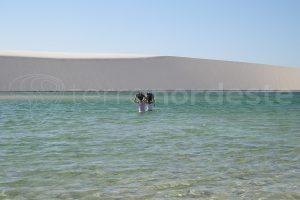 Lencois Maranhenses, traversée des lagunes en trek