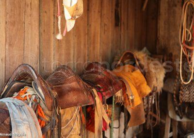 Brésil, Pantanal - Selles chevaux
