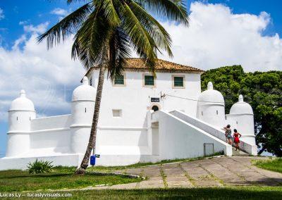 Salvador de bahia - Monument blanc palmier