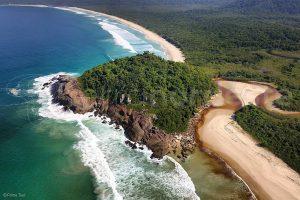 Costa Verde Ilha Grande, Mata atlantica