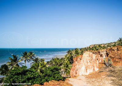 Canoa, Brésil, Litoral, cocotiers et plage