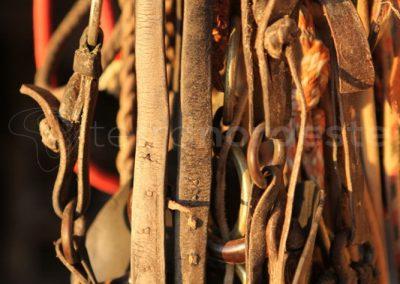 Brésil, Pantanal - Mors et licols chevaux